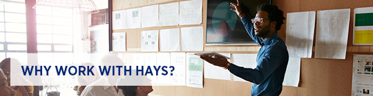 Why work with Hays for your digital marketing staffing needs?